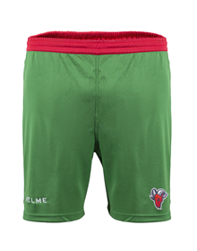 Away Kit Shorts green, 18/19 Baskonia_image