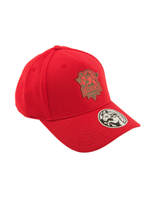 Junior Red cap Baskonia_image