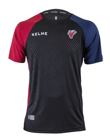 Player Short-Sleeved Training Jersey, 18/19 Baskonia _image