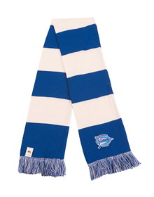CLASSIC EMBROIDERED SCARF DEPORTIVO ALAVÉS_image
