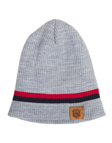 Grey shield hat Baskonia_image