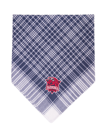 Traditional blue bandana, Baskonia crest_image