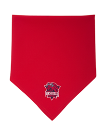 Traditional red bandana, Baskonia crest_image