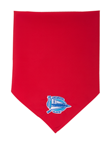 Traditional red bandana, Deportivo Alaves crest_image