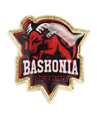 Official Baskonia crest pin