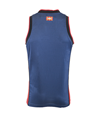 Home jersey blue and red (Baskonia), 18/19 Baskonia