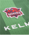 Away Shooting jersey green (Baskonia), 18/19 Baskonia